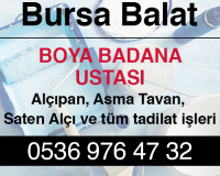 Bursa Balat Alçıpan Ustası