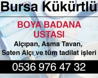 Bursa Kükürtlü Boya Badana Ustası
